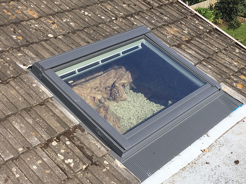 Velux windows meister emson dorset roofing specialist for Velux glass